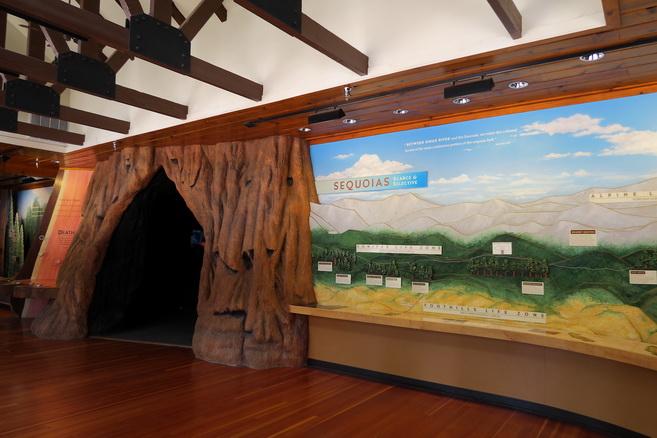 Музей в национальном парке Секвойя